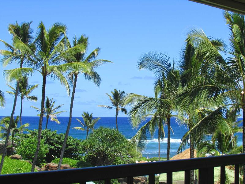 Oceanfront Resort - Exotic Paradise Found! - Image 1 - Lihue - rentals