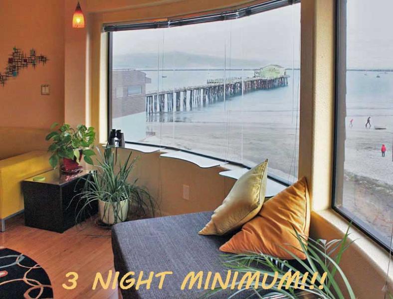 The Suite has Panoramic Harbor Views! - Exotic Tropical MAVERICKS Beachfront LOFT! - Half Moon Bay - rentals