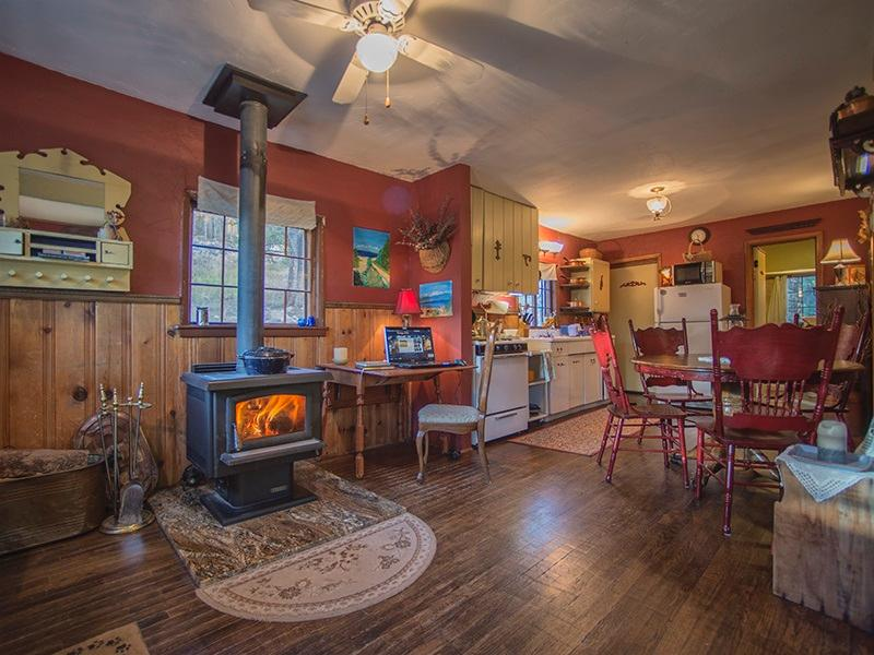 Cozy, Romantic Cabin - Image 1 - Leadville - rentals