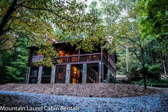 DEER MEADOW- 2BR/3BA- SECLUDED CABIN SLEEPS 8, HOT TUB, CHARCOAL GRILL, FIRE PIT, PING PONG, PET FRIENDLY, SATELLITE TV, WET BAR, GAS LOG FIREPLACE, WOOD BURNING STOVE, WIFI, WALKING DISTANCE TO THE TOCCOA RIVER! ONLY $109 A NIGHT! - Image 1 - Blue Ridge - rentals