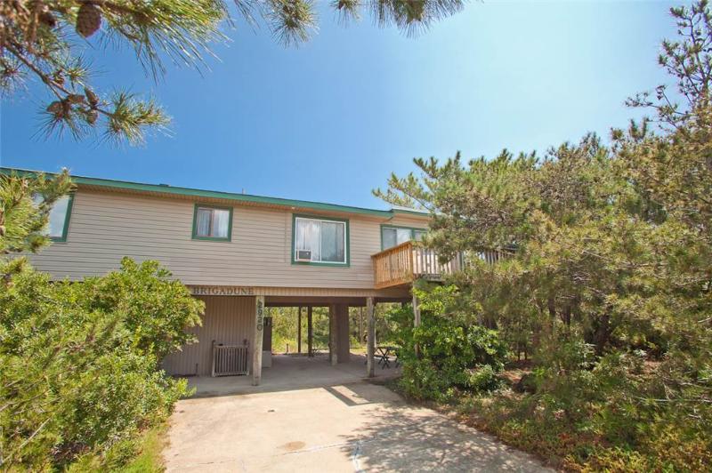 BRIGADUNE - Image 1 - Virginia Beach - rentals