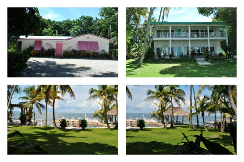 Little Bay Compound - Image 1 - Islamorada - rentals