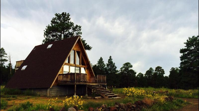 View from the private road - A-Frame Cabin in a National Forest - Flagstaff - Flagstaff - rentals