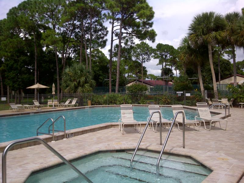 Large heated pool and jacuzzi - Fantastic Villa in Sarasota close by Siesta Key - Sarasota - rentals