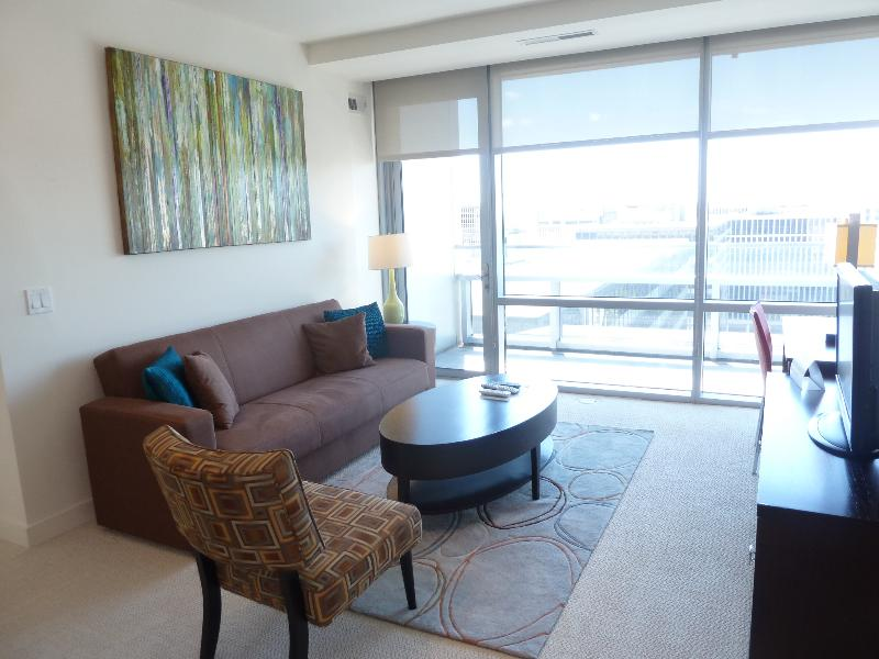 Living room - Lux 1BR Crystal City Apt w/pool - Arlington - rentals