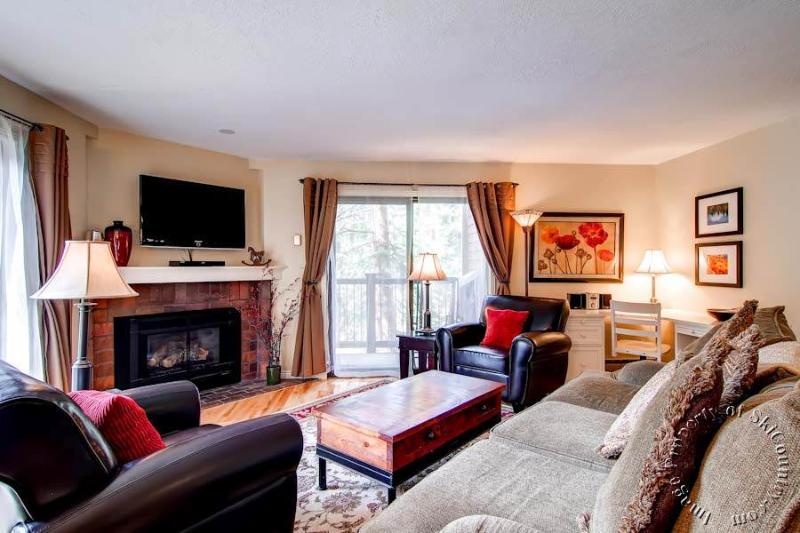Double Eagle Condos B21 by Ski Country Resorts - Image 1 - Breckenridge - rentals
