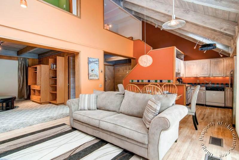 Mill Run Townhomes 14 by Ski Country Resorts - Image 1 - Breckenridge - rentals