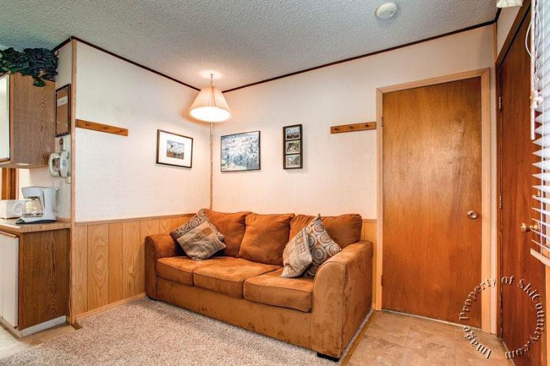 Park Meadows Lodge 4B by Ski Country Resorts - Image 1 - Breckenridge - rentals