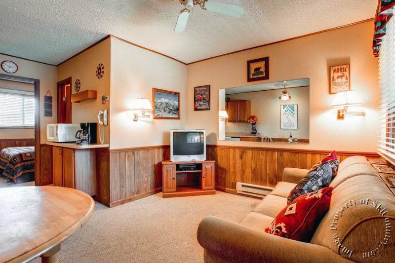 Park Meadows Lodge 5C by Ski Country Resorts - Image 1 - Breckenridge - rentals