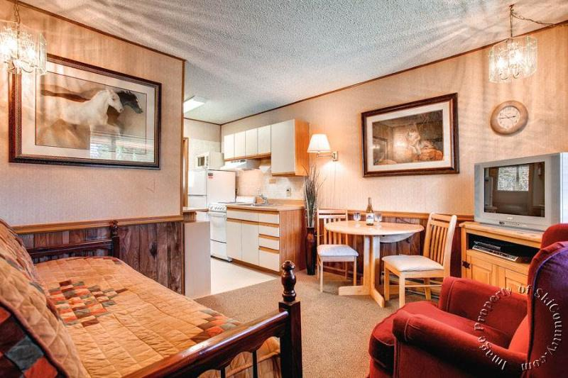 Park Meadows Lodge 6C  by Ski Country Resorts - Image 1 - Breckenridge - rentals