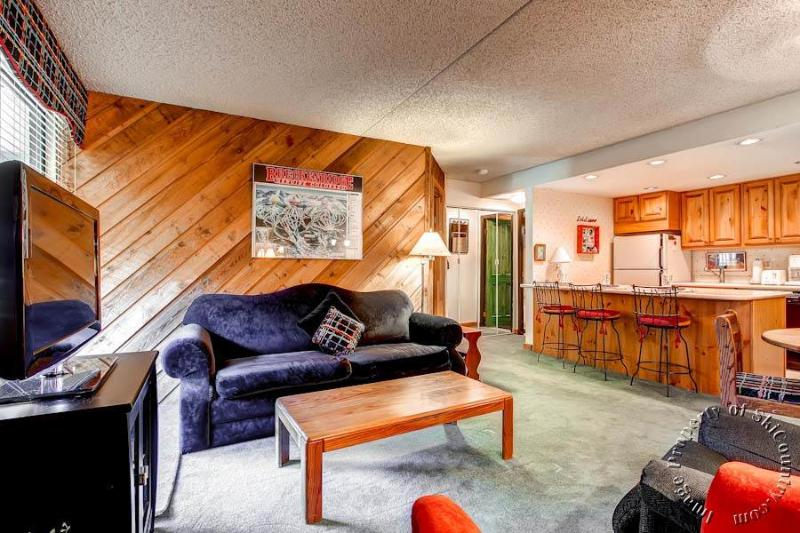 Trails End Condos 117 by Ski Country Resorts - Image 1 - Breckenridge - rentals