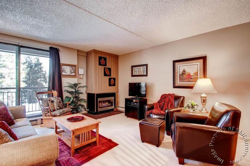 Trails End Condos 111 by Ski Country Resorts - Image 1 - Breckenridge - rentals