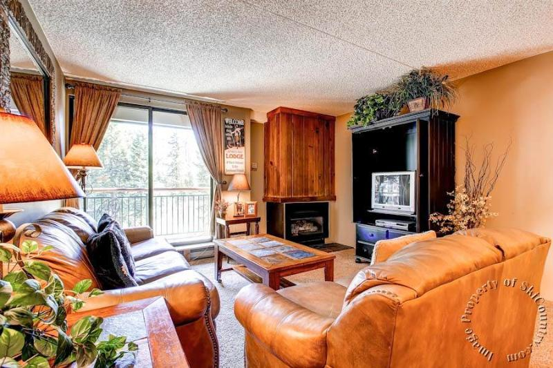 Trails End Condos 204 by Ski Country Resorts - Image 1 - Breckenridge - rentals