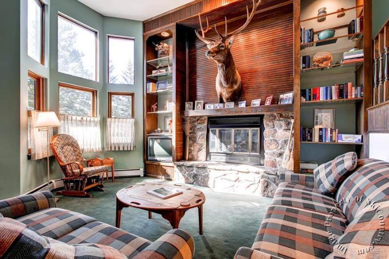 Victorian Ridge 490 by Ski Country Resorts - Image 1 - Breckenridge - rentals