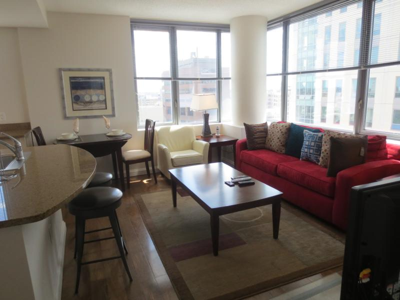 Living room - Lux Downtown Boston 1BR Apt w/pool - Boston - rentals