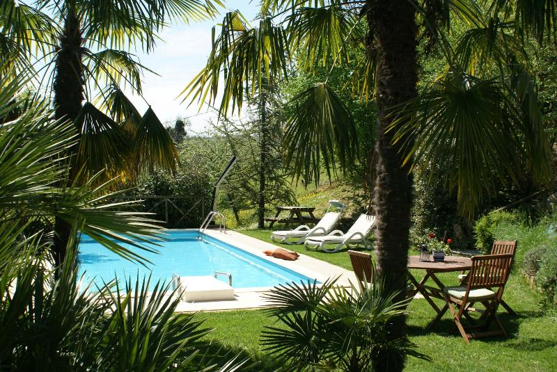 Private Villa, pool,wi-fi, pets allowed, Macerata - Image 1 - Sant'Angelo In Pontano - rentals