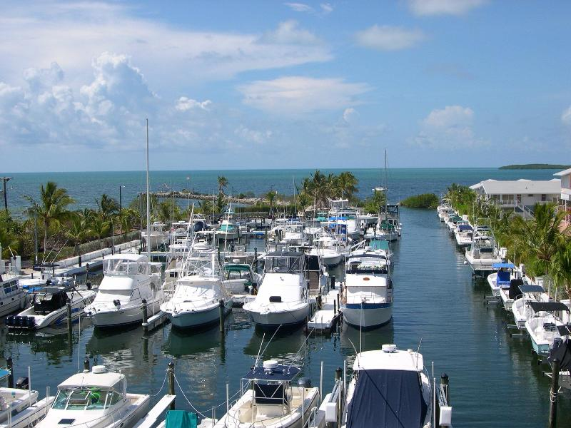 Direct Ocean Views From Condo - 2/2 Oceanfront Suite - Kawama Yacht Club/Pri. WiFi - Key Largo - rentals