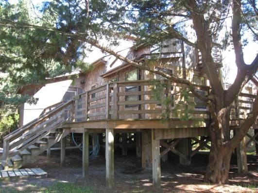 CR35: Hartlaub Cottage - Image 1 - Ocracoke - rentals