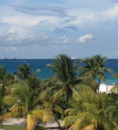great view - 2/2 Loft PH steps to Ocean Dr. private Ocean VIEW! - Miami Beach - rentals
