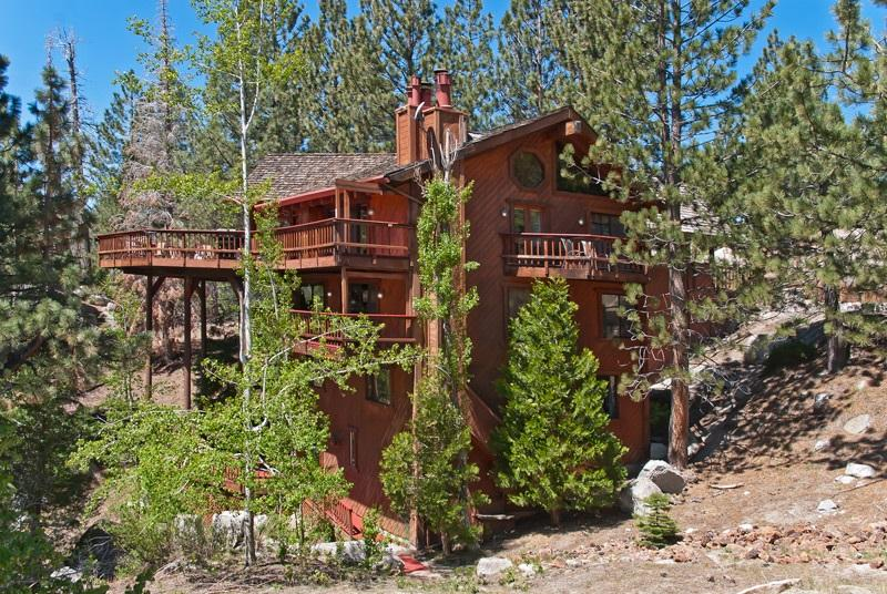 8 bedroom by Heavenly w/Indoor Pool on 5 acres - Image 1 - South Lake Tahoe - rentals