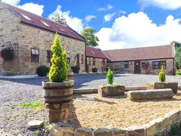 THE GRANARY COTTAGE, pet-friendly cottage with patio, flexible accommodation, Saltburn Ref 7402 - Image 1 - Brotton - rentals
