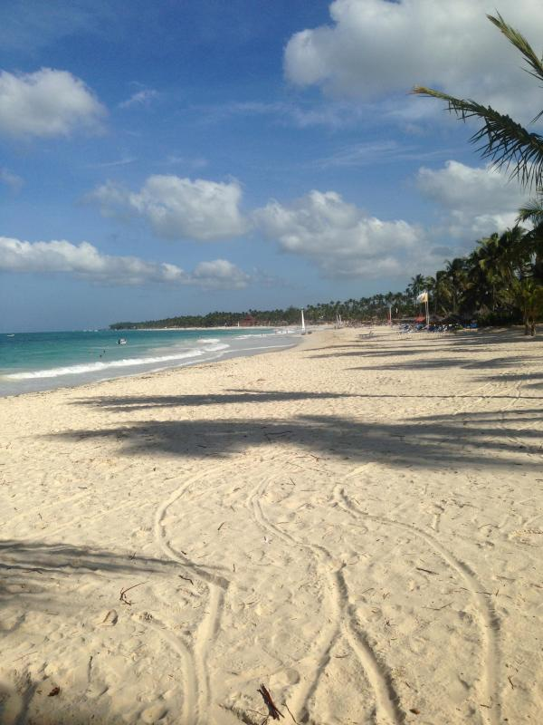 A view of the Beach! - Tropical Tranquility - One bedroom two bath - Punta Cana - rentals