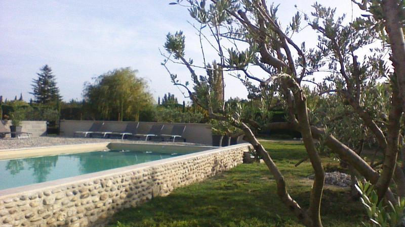 Swimmingpool - Résidence les Belles heures - Roaix - rentals