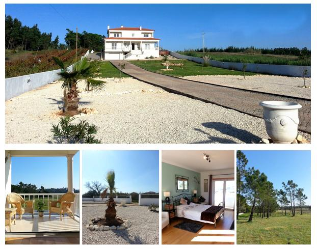 Front of Villa - Stunning villa, 1.5 acres, pool, parking, privacy! - Woodston - rentals