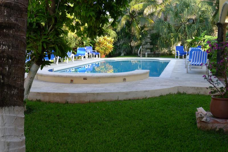 An Oasis in the heart of San MIguel - An oasis in the heart of San MIguel. - Cozumel - rentals