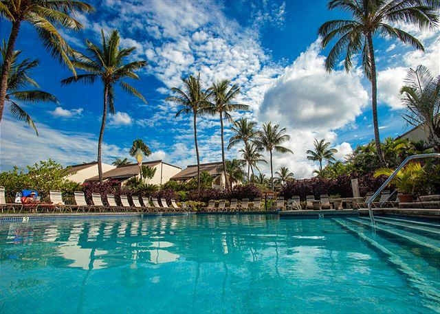 Maui Kamaole J-219 - Maui Kamaole J-219 Gorgeous 2B 2Bath Ocean View: Great Rates! - Kihei - rentals