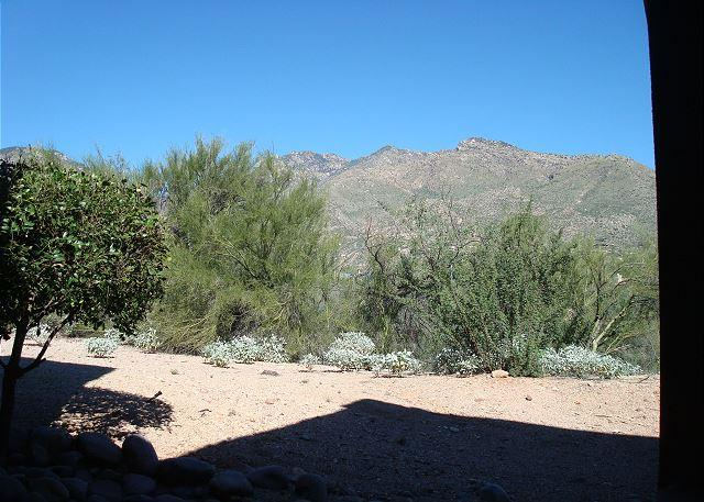 Picture Name - First Floor with Stunning Mountain Views at The Greens at Ventana Canyon - Tucson - rentals