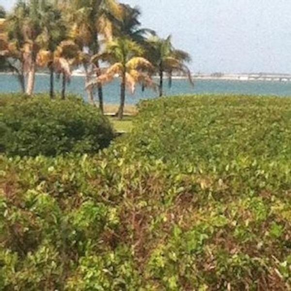 View of the Bay from living room - One minute walk to gulf beaches, Big, 3 BR, 55 inc - Sanibel Island - rentals