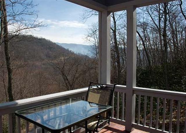 View from Deck - Grace House - Black Mountain - rentals