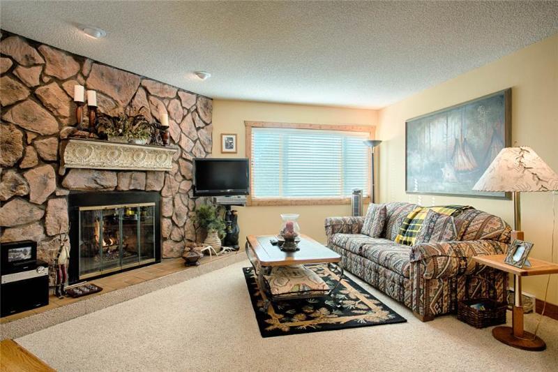 Sawmill Creek Condo 301 - Image 1 - Breckenridge - rentals