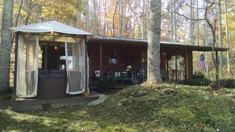 The Dream Cabin - Dream Cabin - Waynesville - rentals