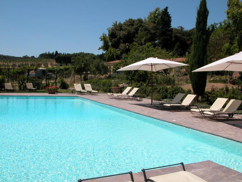 Swimming pool - 2 bedroom apartment near Siena (BFY13503) - Ville di Corsano - rentals