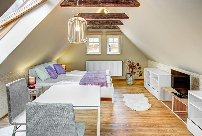 ABC Suites - Luxury Studio in the Old Town - ABC Suites - Luxury studio in Old Town - Prague - rentals
