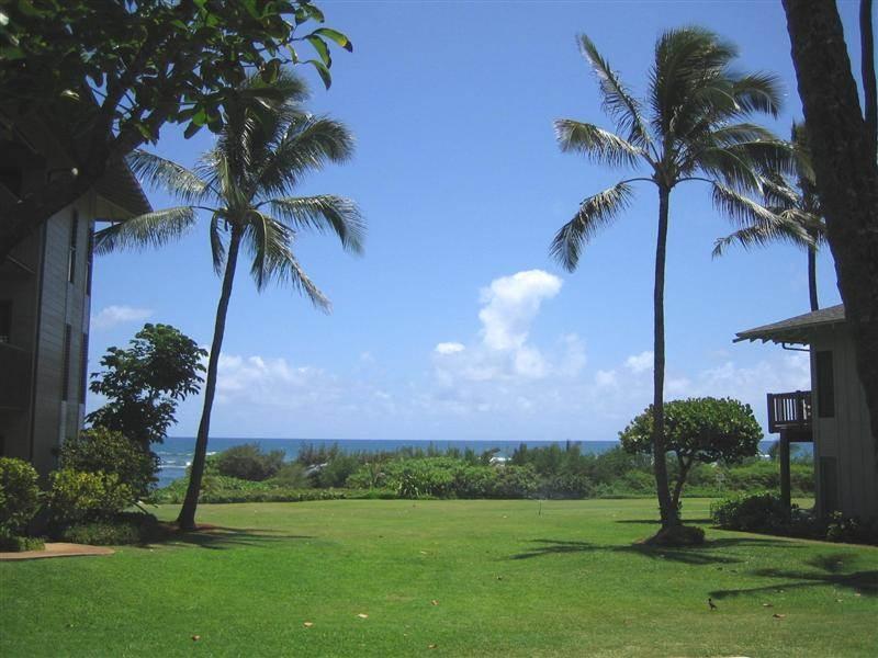 Kaha Lani Resort #114 - OCEANVIEW, COMP WIFI! - Image 1 - Kapaa - rentals