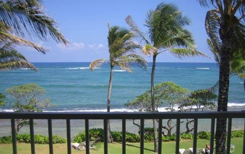 Kapaa Shore Resort #305-OCEANFRONT!Sun/Moonrises! - Image 1 - Kapaa - rentals