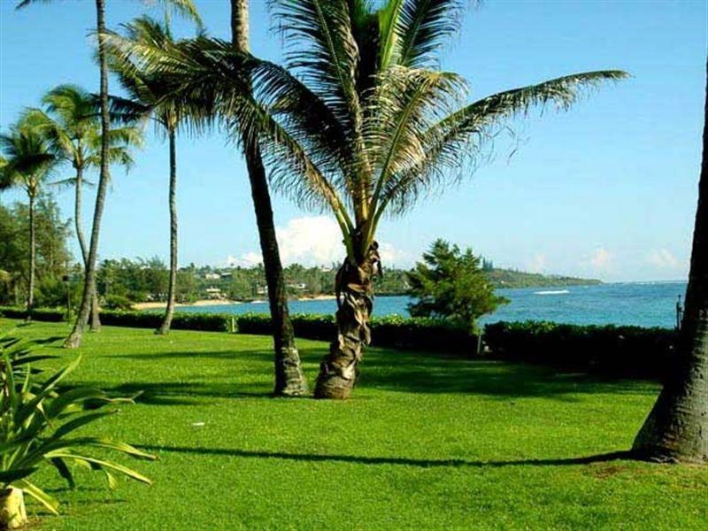 Pono Kai Resort A305 OCEANFRONT TOP FLOOR - Image 1 - Kapaa - rentals