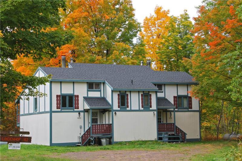 Lindenhof 2 - Image 1 - Ironwood - rentals