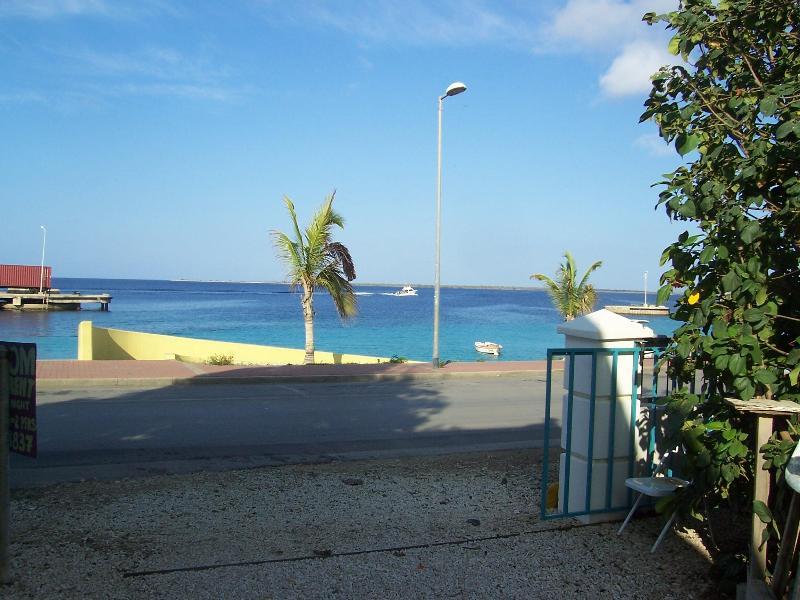 swim, snorkel dive  right HERE ! - OCEANFRONT CUTE HOME IN TOWN. 10% DIVING DISCOUNT - Kralendijk - rentals