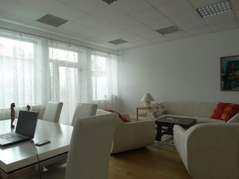 Living Room seen towards south vest - Spacious Mid Reykjavík Apartment - Reykjavik - rentals