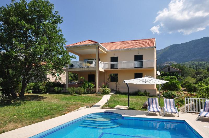 Villa Petra with swimming pool - Image 1 - Gruda - rentals