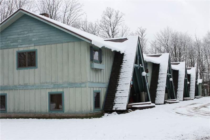 Schwiebl Haus - Image 1 - Ironwood - rentals