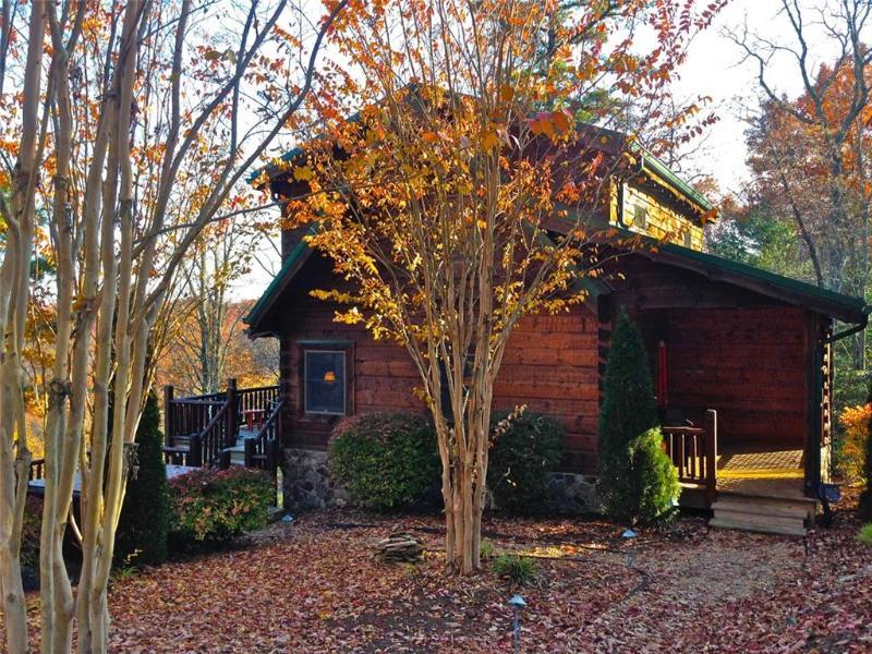 Bear Necessities - Image 1 - Boone - rentals