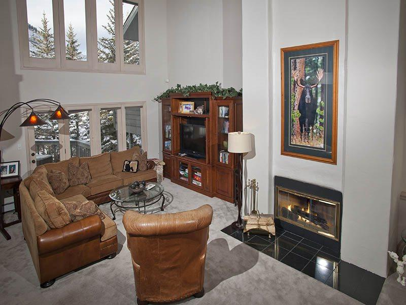Living Room - Your family and friends will enjoy this spacious rental home, back yard and deck. And the hot tub too. - Vail - rentals