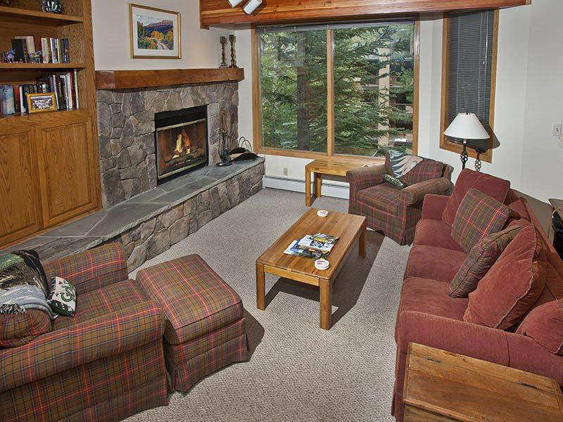 Living Room w/HD TV - A very affordable vacation home with a Gold rating, across the main road from Vail Golf Club. - Vail - rentals