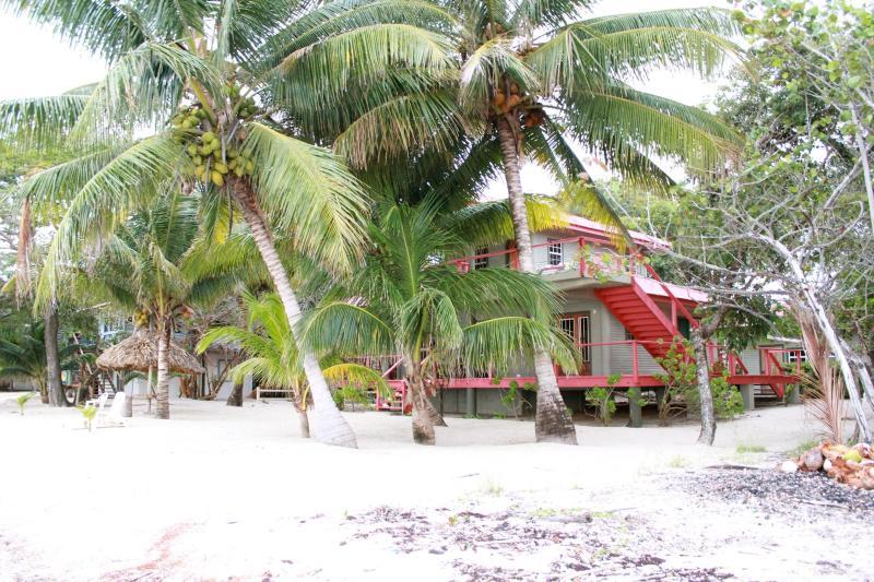 A nice position on a sunny beach - Joya del Mar Beach House Maya Beach - Placencia - rentals