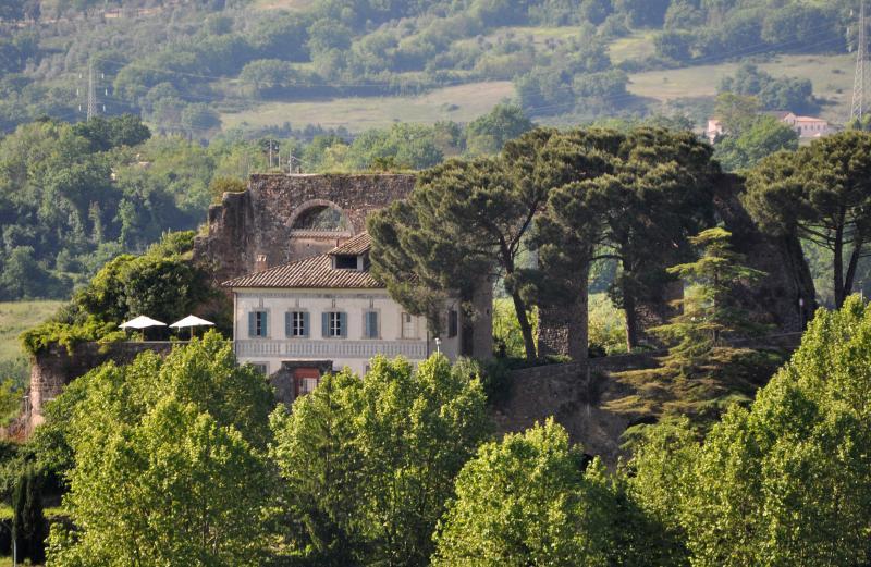 • Renaissance Villa • Orte, Umbria Lazio Border • - Image 1 - Orte - rentals